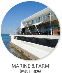 marine_farm_thumbnail